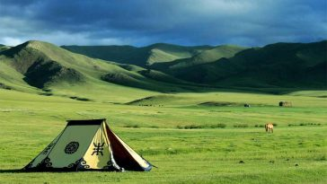 largest grasslands in the world